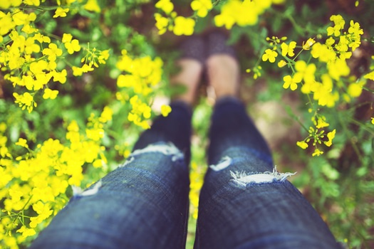 woman legs flowers summer medium